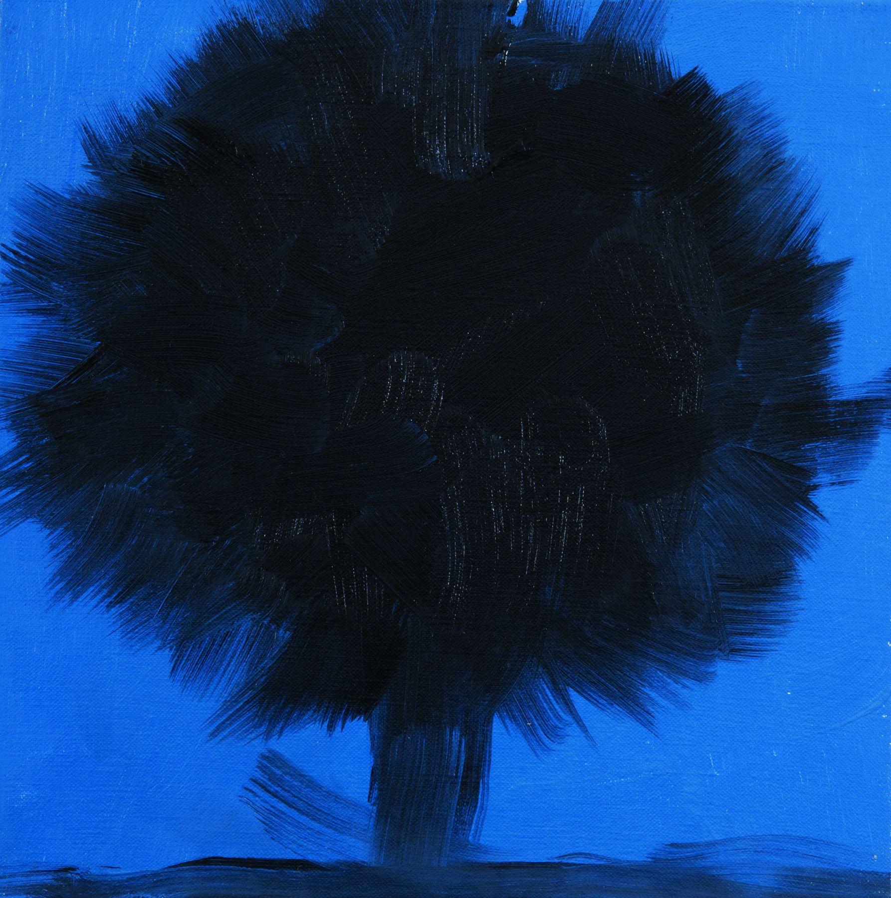 ANN CRAVEN, Tree (Purple Beech, Cushing 8.11.12, 9:30PM),2012
