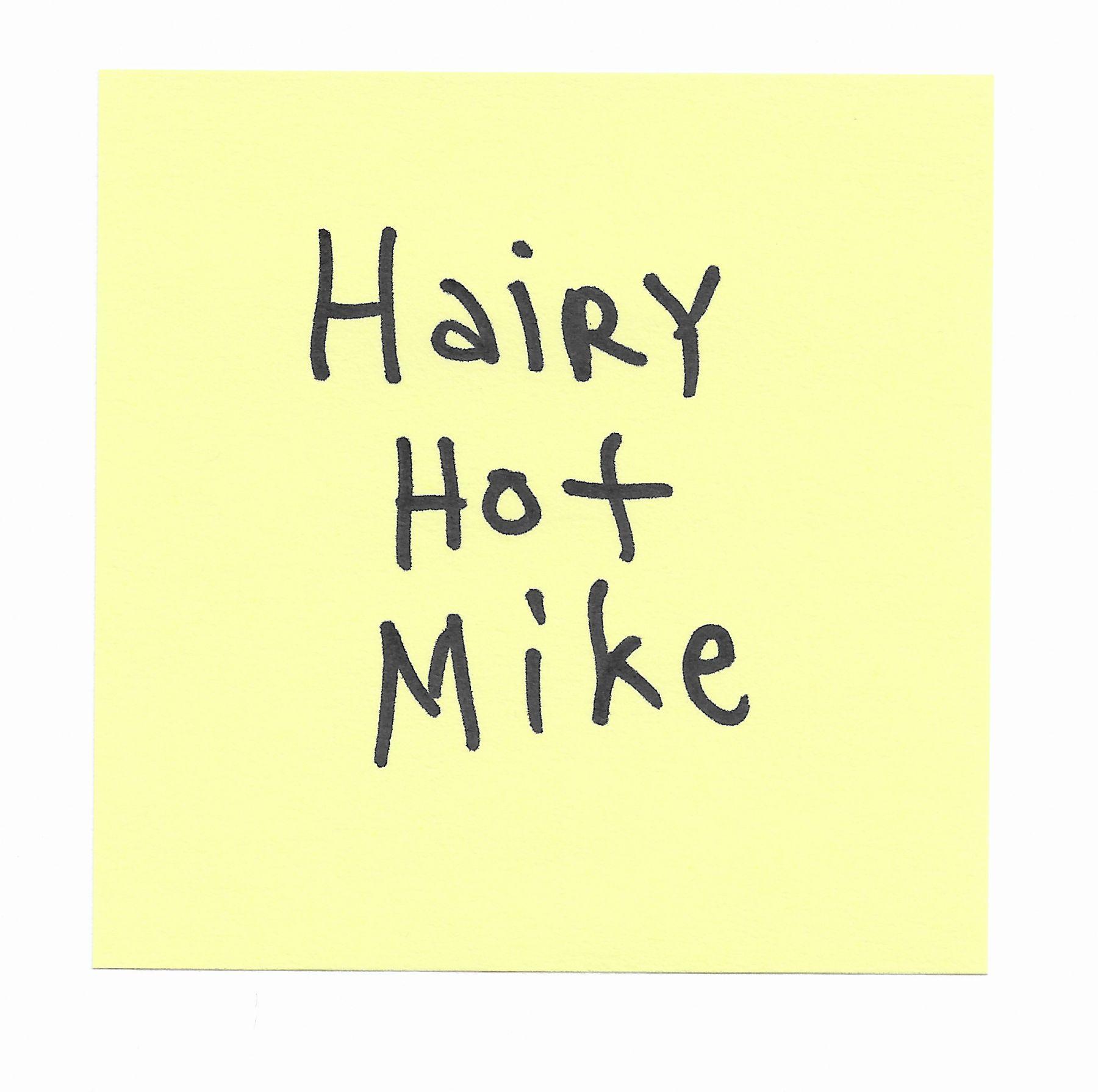 JOE OVELMAN  Post-it Series X (Hairy Hot Mike)