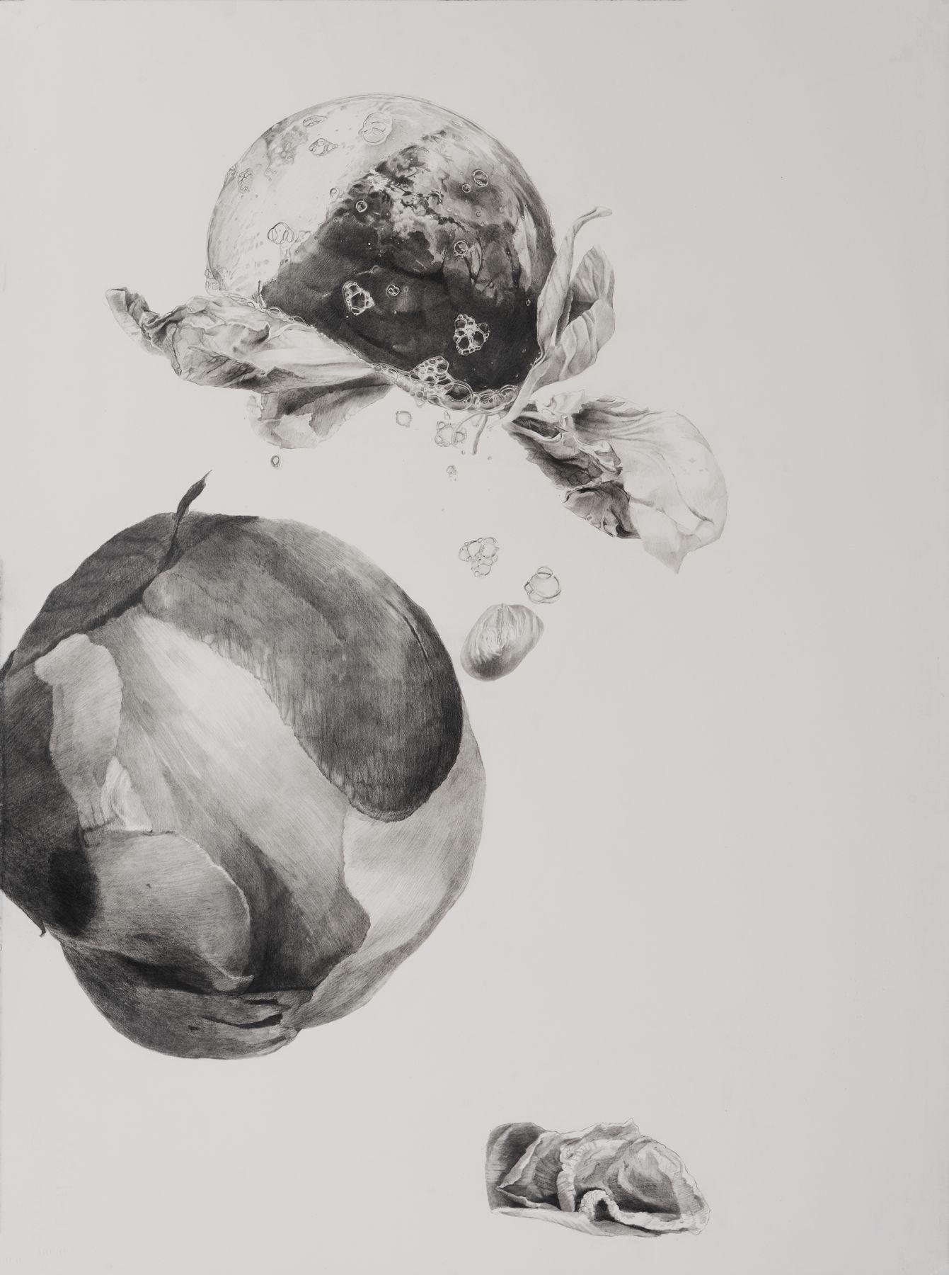 Dead Flowers 3, graphite on paper, 30 x 22 1/2 in, JR039