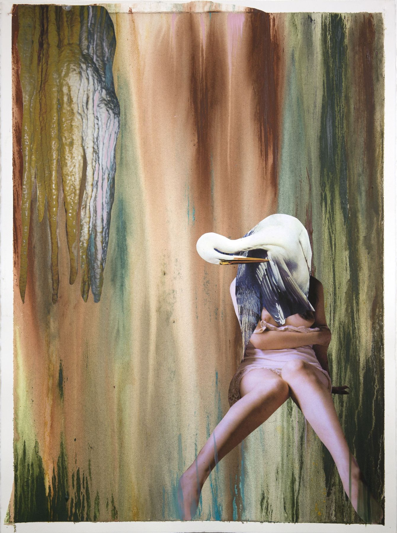 Becoming the White Heron, 2015
