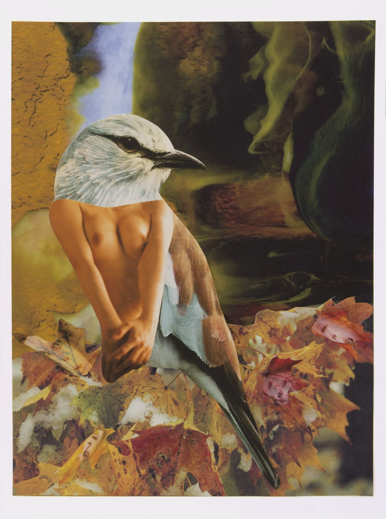 Bluebird of Happiness in the Fall, 2016, Collage on archival pigment print