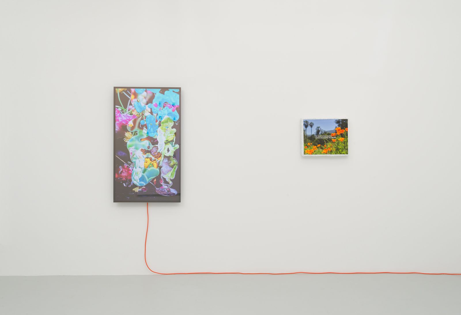 Installation view of Michael Manning Cheap Vacation
