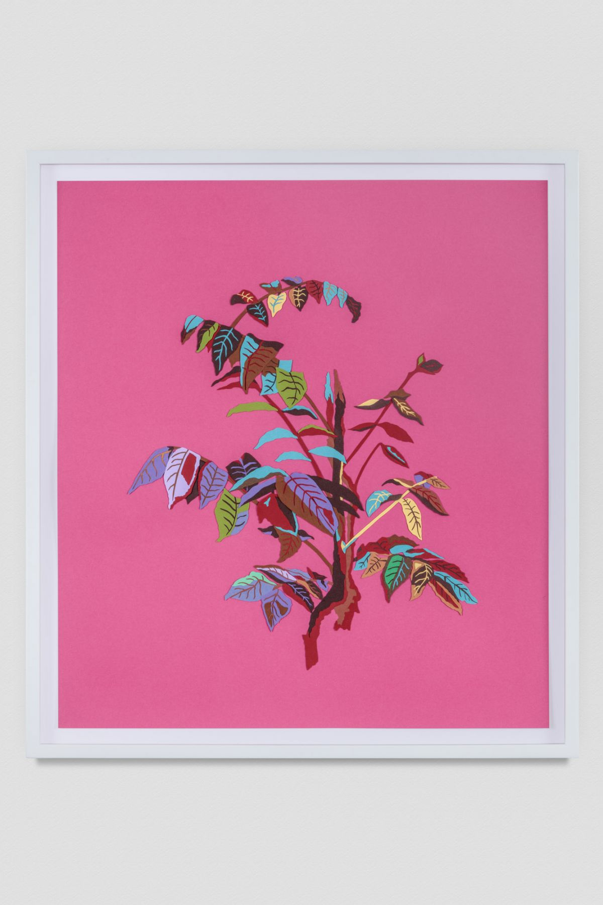 Leaves (Fuschia), 2016, Colored paper and gouache on paper