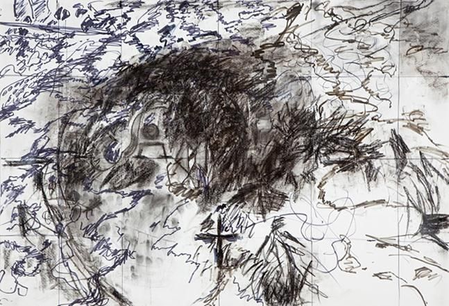 Weeds VI,2010,charcoal, ink and acrylic on paper,30.25x 44 inches