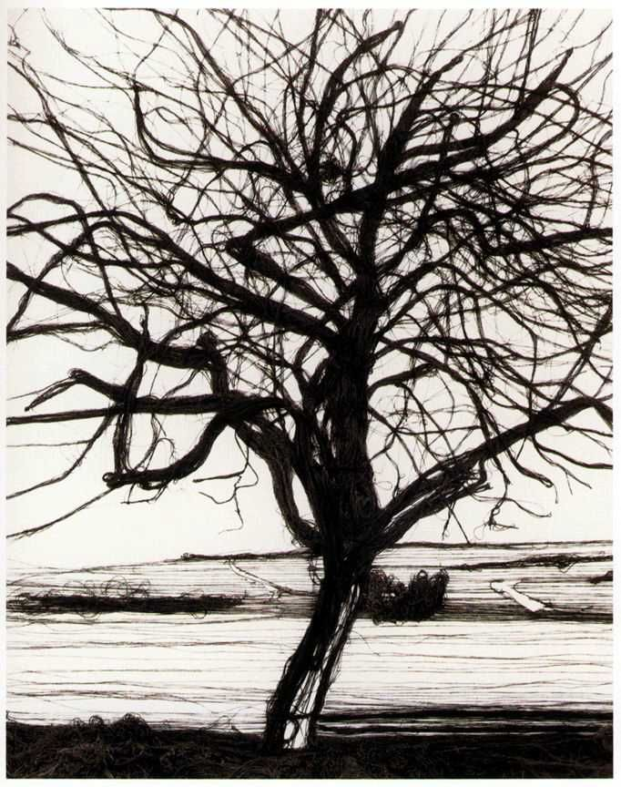 Vik Muniz, 200 Yards (The Apple Tree, After Atget), 1992, Gelatin silver print, 24 x 20 inches, Edition 5/5