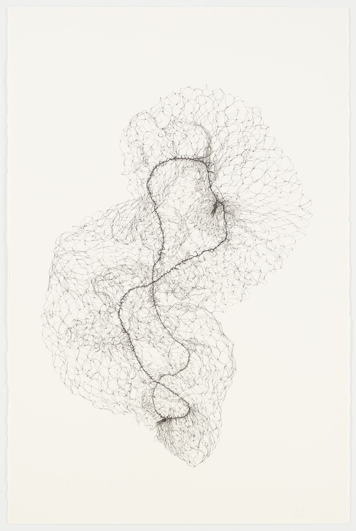 Susie MacMurray, Hairnet Drawing, 2013