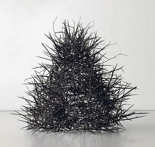 Home, 2008,Honey Locust thorns,38 x 32 inch radius