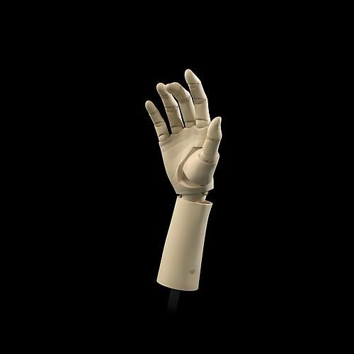 Bartlett's Hand: 14 Poses (Pose 3), 2008