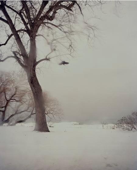 Todd Hido, #10192-50, 2011, Archival pigment print, 76 1/2 x 59 1/2 inches