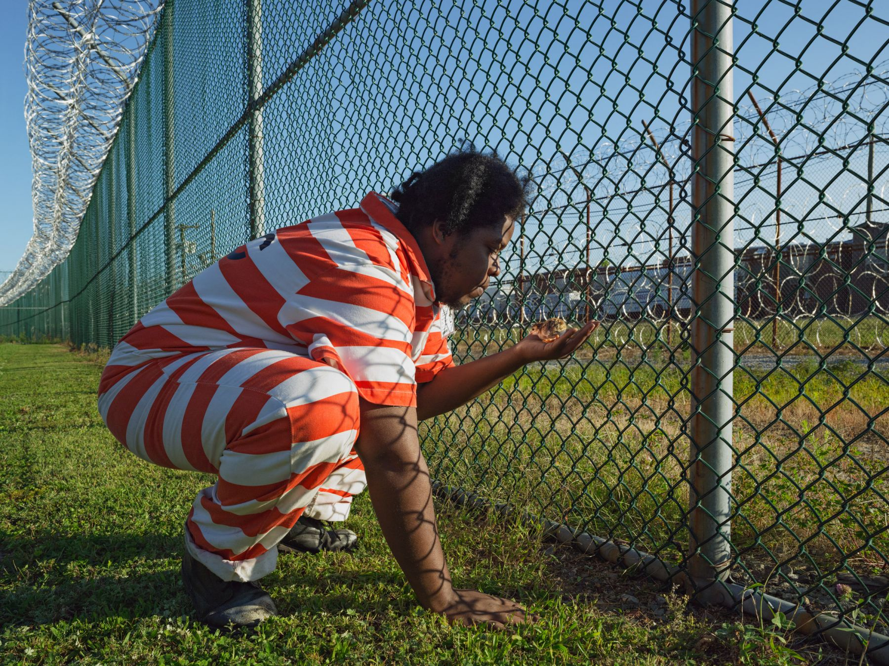 LUCAS FOGLIATroy with a Guinea Hen Chick, GreenHouse Program, Rikers Island Jail Complex, New York, 2014, Pigment Print34 x 44 inchesEdition of 8