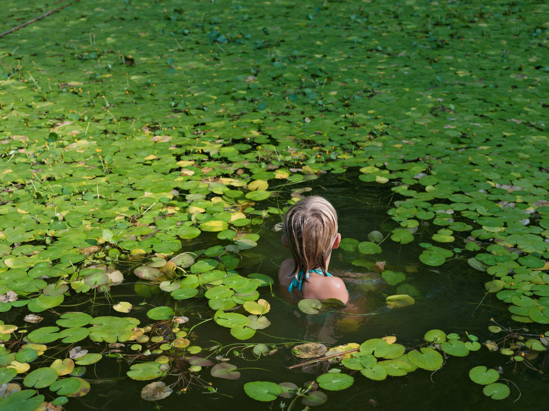 LUCAS FOGLIA Maddie with Invasive Water Lilies, North Carolina, 2008