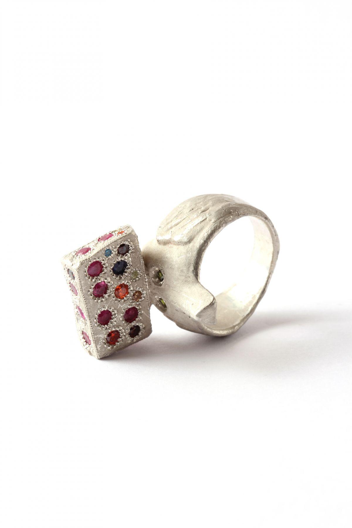 Karl Fritsch, Ring