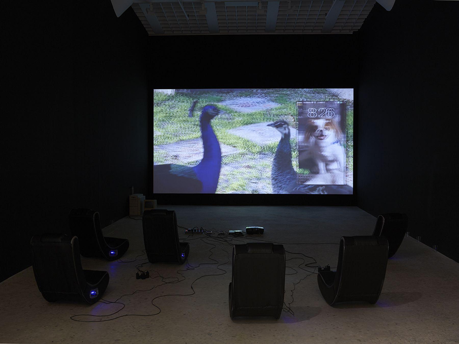 Installation view, Orlando, Greene Naftali, New York, 2015