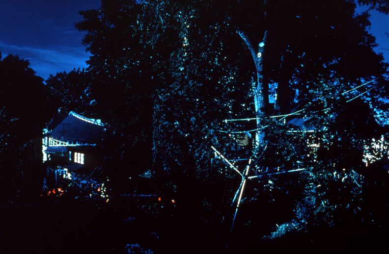 Day for Night, Christiania (The Dandelion/The Laboratories), 1996, c-print, 26 x 38 1/2 inches, edition of 5