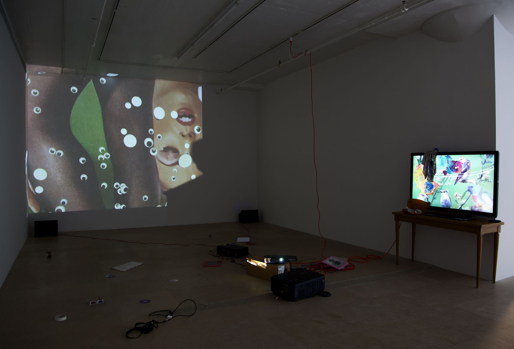Trisha Baga, Peacock, 2011, Video installation, Dimensions variable