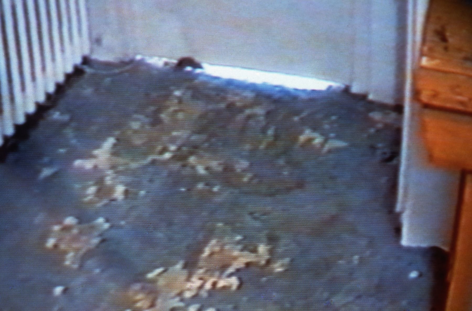 Lucy Gunning,  Mouse Running Round Kitchen, 1993 (still), VHS video, 45:00 min