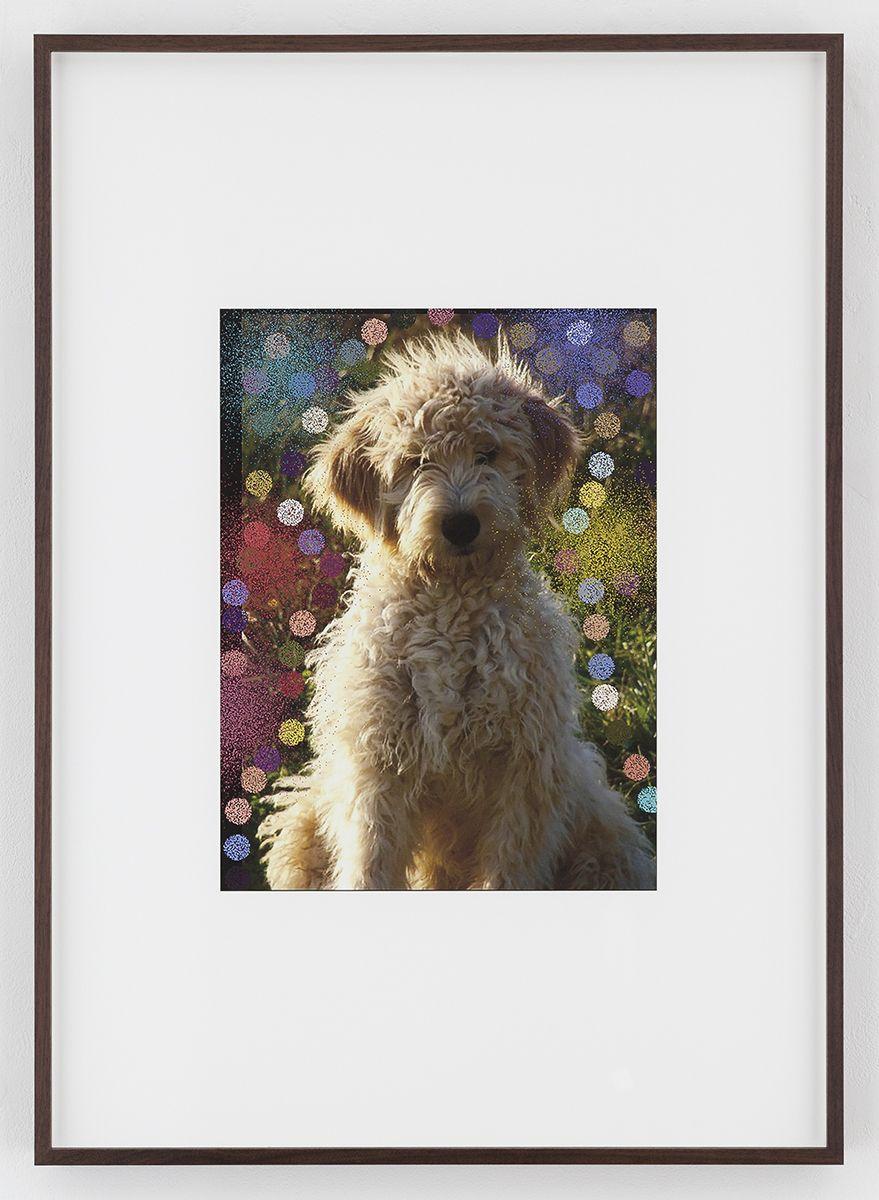 Hilary Lloyd  Sun Dog, 2017  Archival pigment print  Framed: 33 3/4 x 24 x 1 7/8 inches  (857 x 61 x 4.8 cm)  Unique