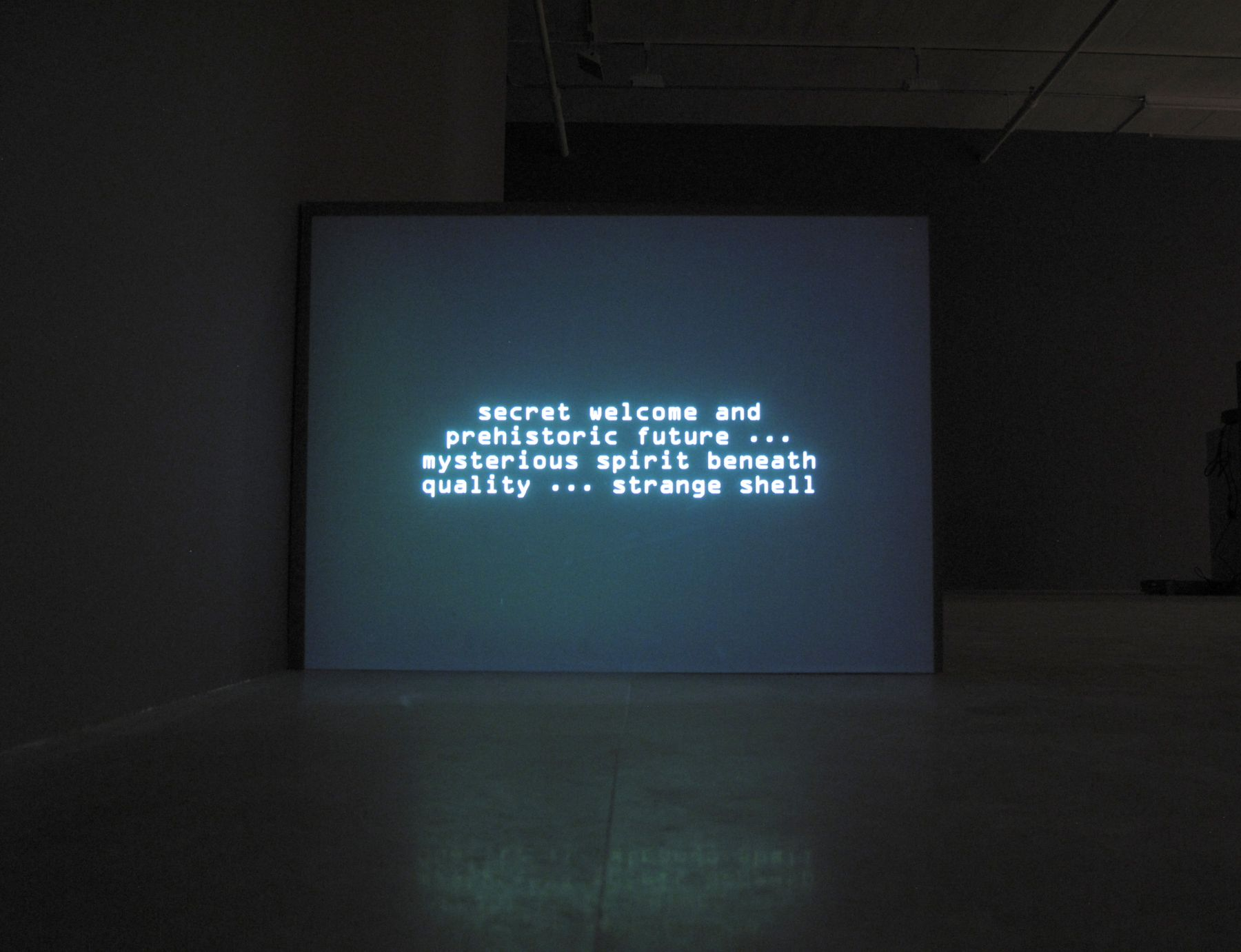 Numerous Incidents of Indefinite Outcome, 2007, Computer generated text, Indefinite duration, Installation view, Greene Naftali, New York, 2010