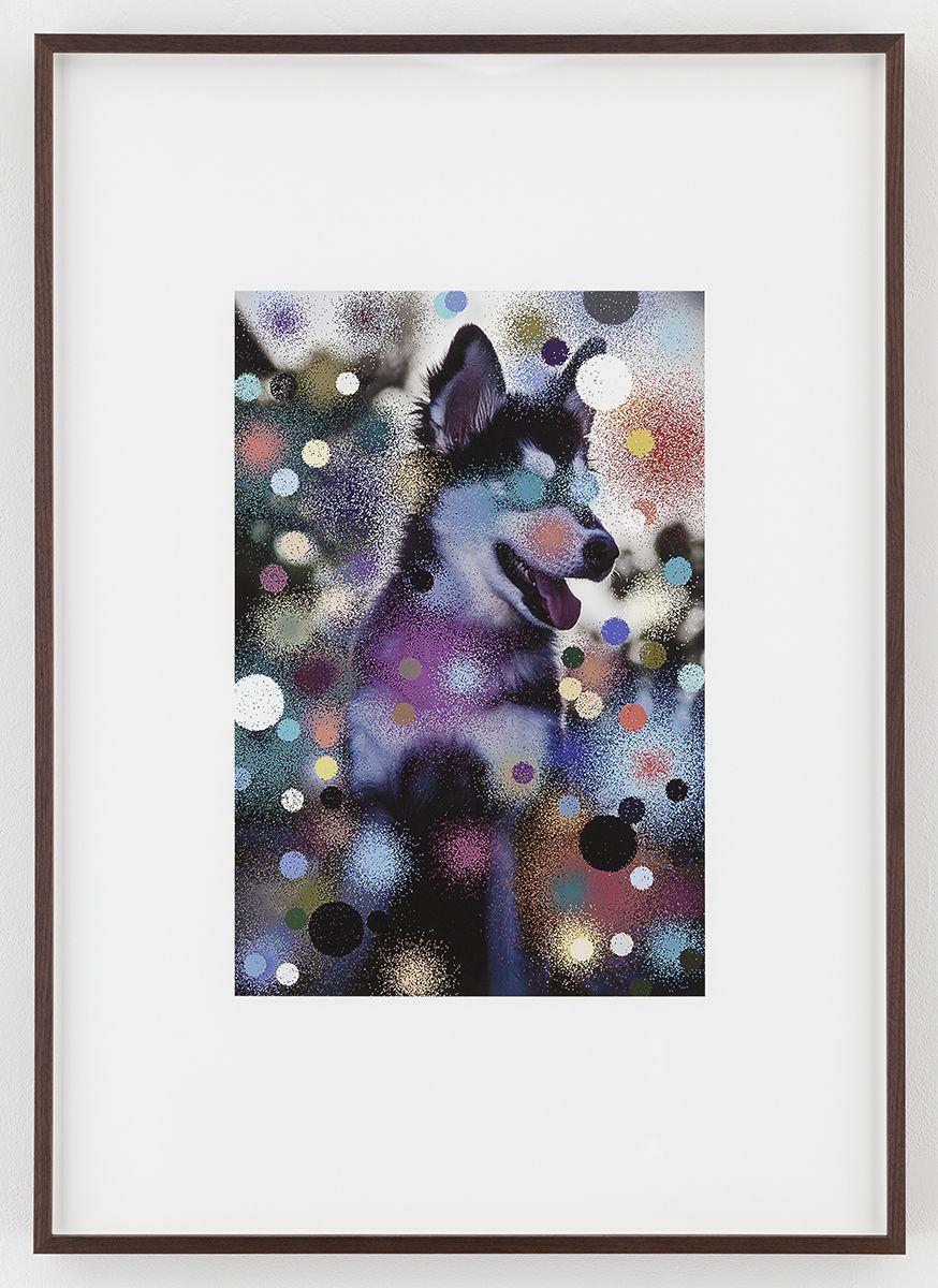 Hilary Lloyd  Manhattan Dog, 2017  Archival pigment print  Framed: 33 3/4 x 24 x 1 7/8 inches  (85.7 x 61 x 4.8 cm)  Unique