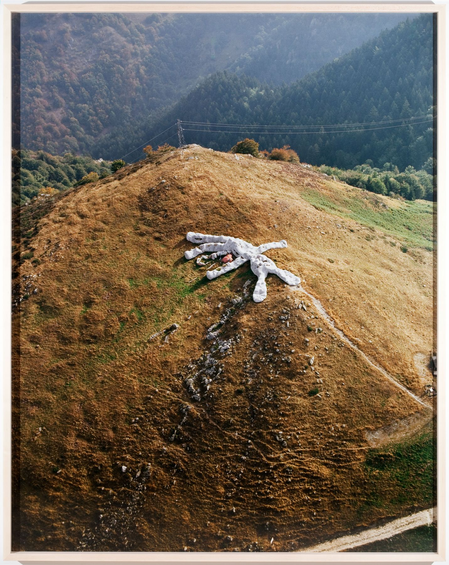Hase, 2009, c print, 65 1/8 x 51 3/8 inches