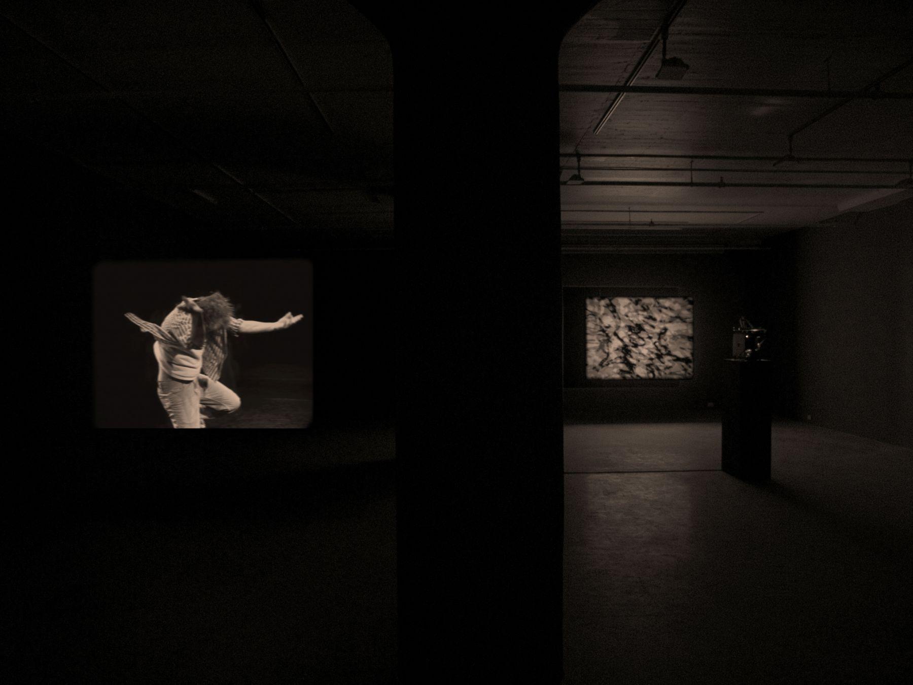Joachim Koester, Installation view, From the Secret Garden of Sleep, Greene Naftali, New York, 2010