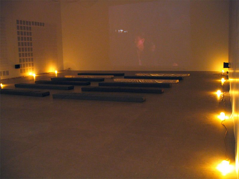 Installation view, Fia Backström, In Memory of HERD INSTINCT 360º, Greene Naftali, New York, 2006