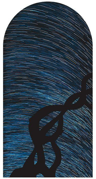 I pity you, unhappy stars, 2004,  archival inkjet print,  88 x 44 inches