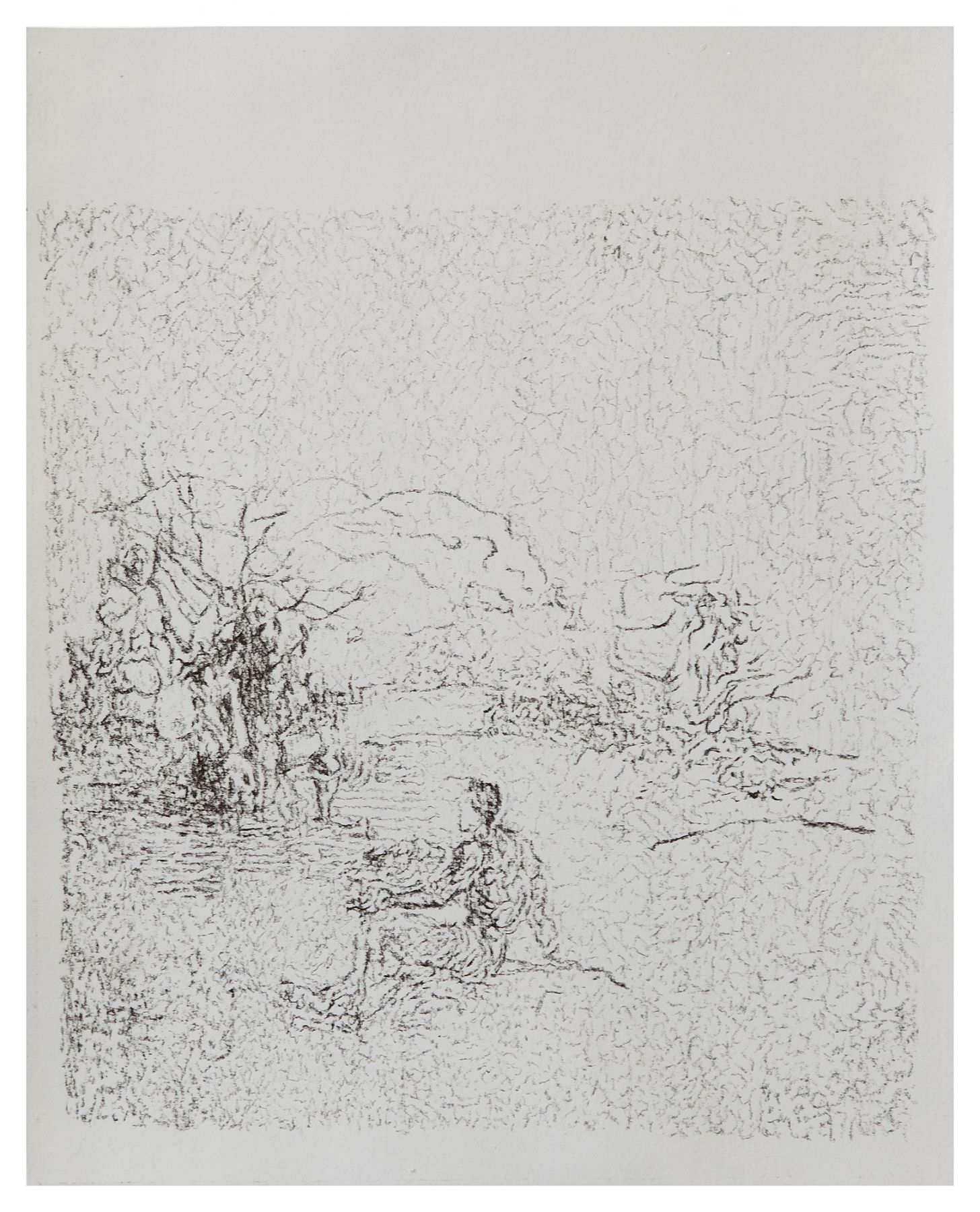 Sergej Jensen Narcissus, 2015 Charcoal on paper Paper: 11 x 8 3/4 inches (27.9 x 22.2 cm) Frame: 13 3/4 x 11 3/8 inches (34.9 x 28.9 cm)