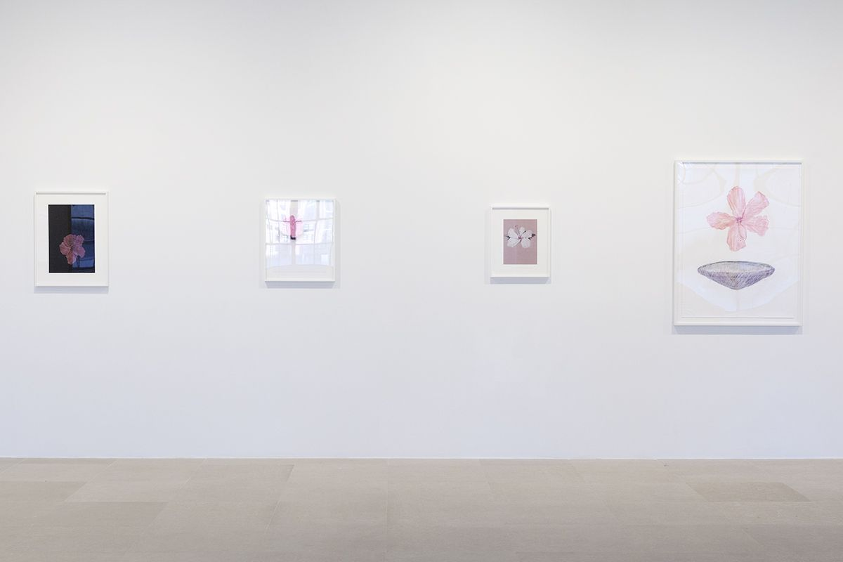 Mayo Thompson, Installation View, 8th Floor, Greene Naftali, New York, 2015