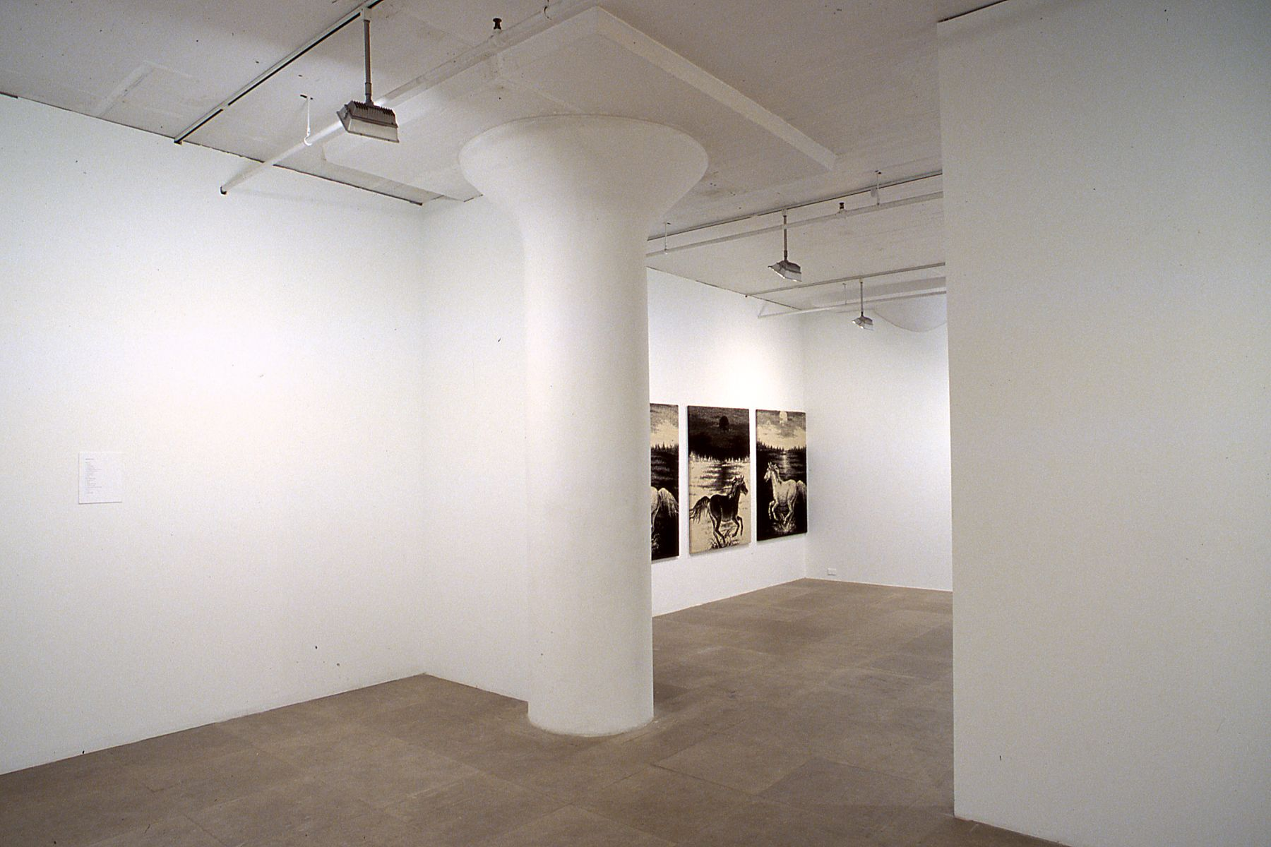 Installation view, Flaggs (Against Nature), Greene Naftali, New York, 2003