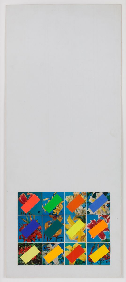Konrad Lueg Untitled Printed flower brochure and paper on card Paper: 4 7/8 x 6 3/8 inches (12.6 x 16.1 cm) Frame: 21 1/4 x 10 3/8 inches (54 x 26.4 cm)