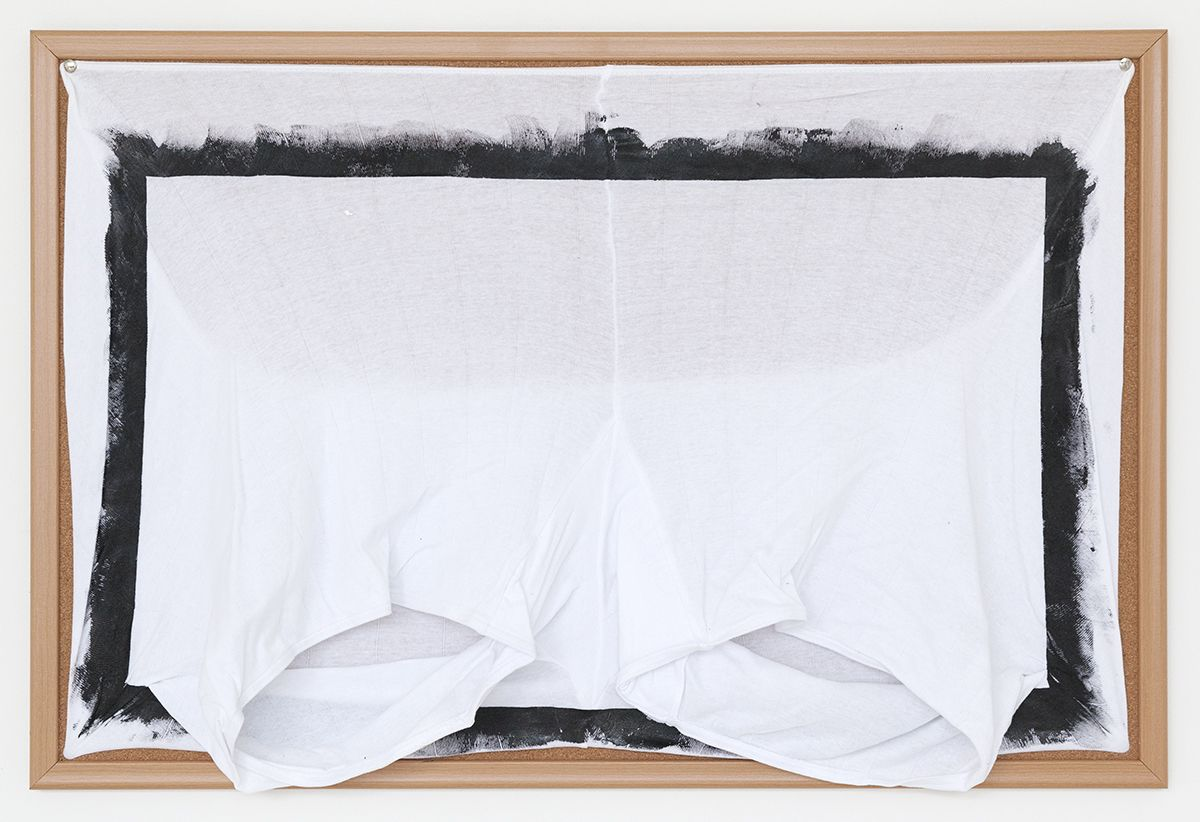 Tony Conrad Untitled (forgotten treasures), 2009 Acrylic, underwear, bulletin board 24 x 36 inches (61 x 91.4 cm)