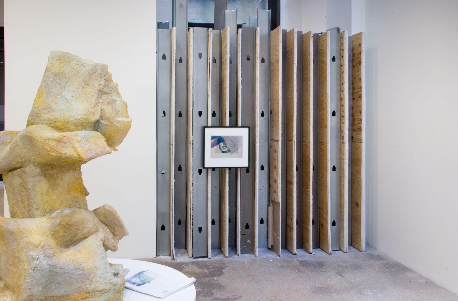 Rachel Harrison  Every Sculpture Needs a Trap Door, 2017