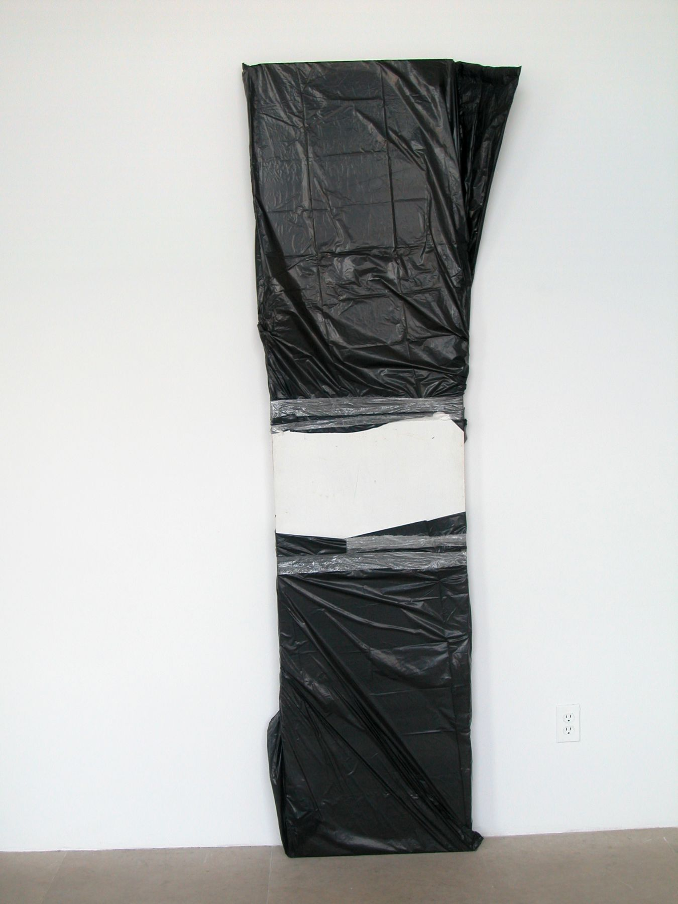 The Last One, 2008, Hollow core door, garbage bags, tape, 88 x 29 x 3 inches