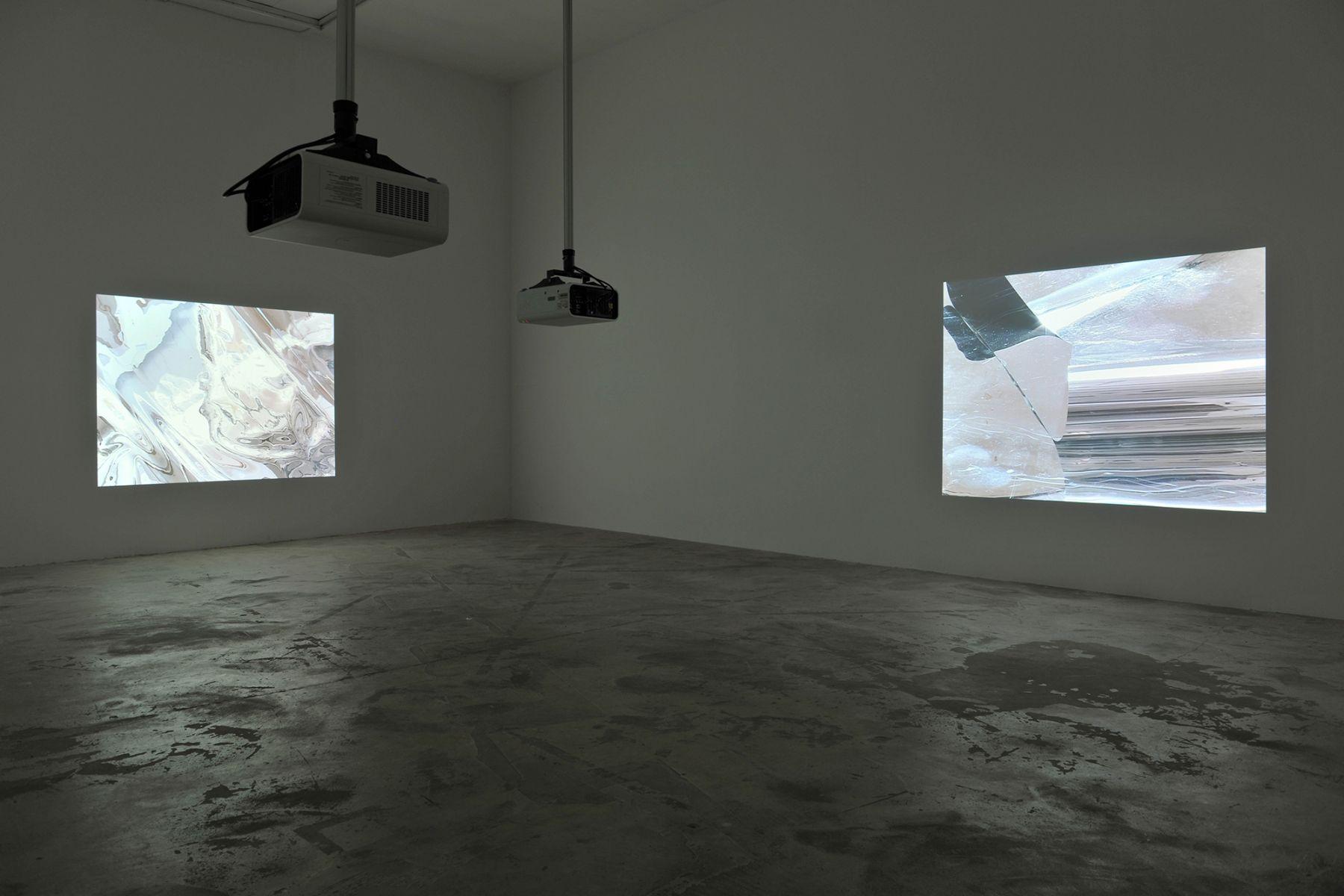 Installation view, Hilary Lloyd, Le Consortium, Dijon, 2009