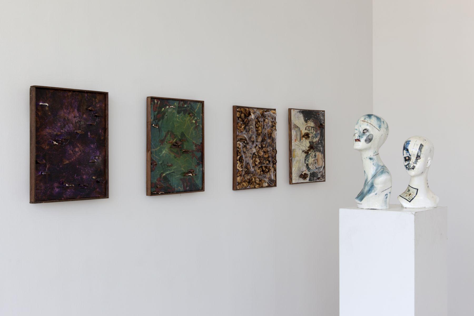 Installation view, SIDE SHOW, Greene Naftali, New York, 2012