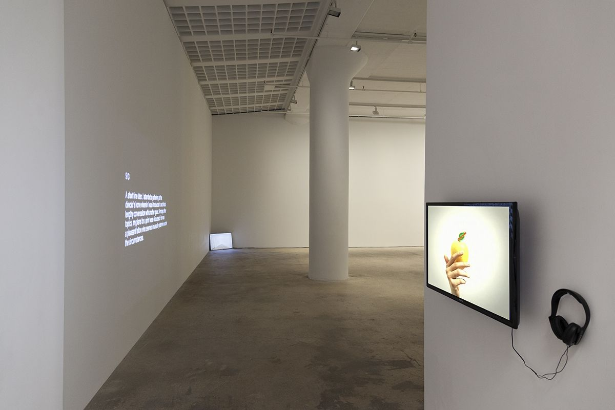 John Knight, Installation view, in situ, Greene Naftali, New York, 2015