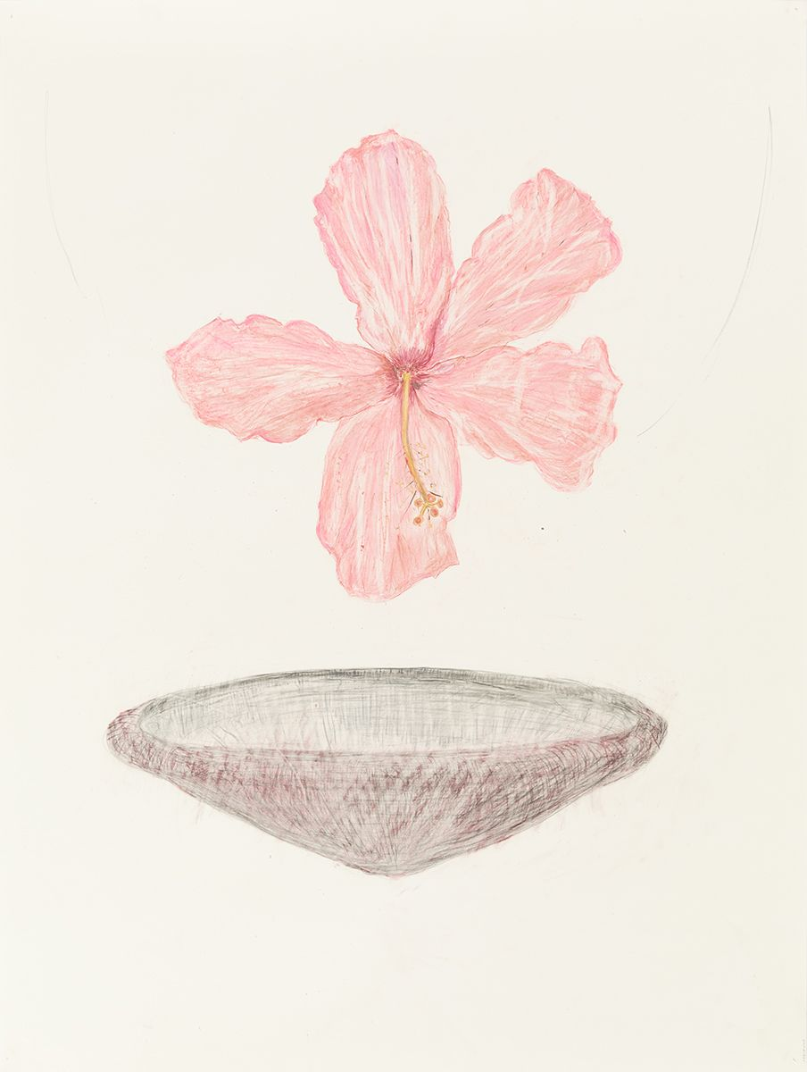 Mayo Thompson Hibiscus, 2015 Colored pencil on paper Paper: 39 7/8 x 30 inches (101.3 x 76.2 cm) Frame: 44 1/8 x 35 1/4 inches (112.1 x 89.5 cm)