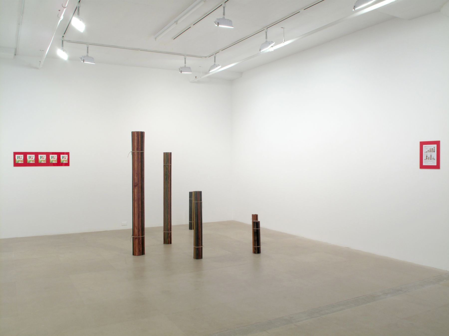 Michaela Meise, Installation view, Constitution, Greene Naftali, New York, 2009