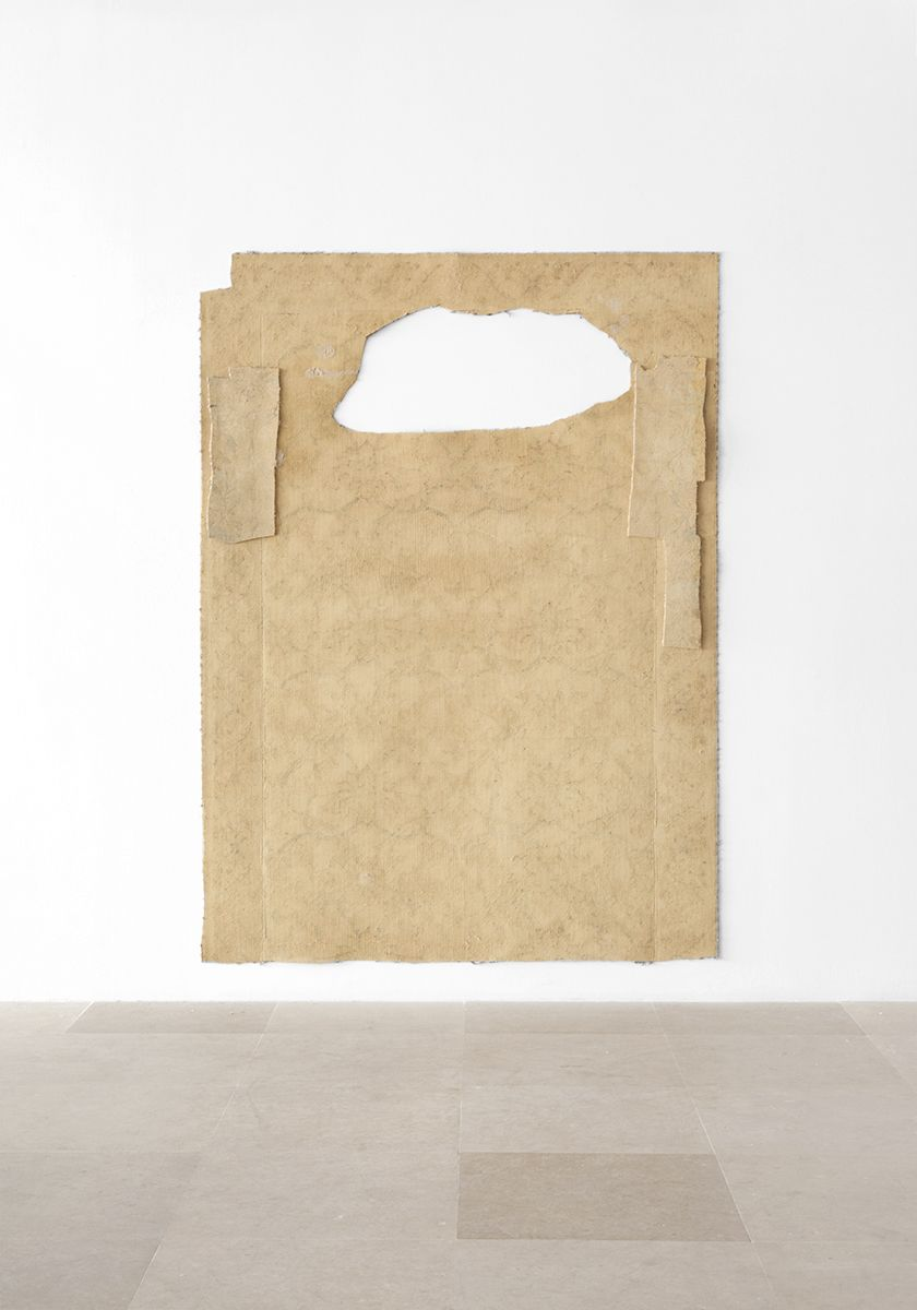 Gedi Sibony, The Flounder, 2013, Carpet, 92 x 67 inches