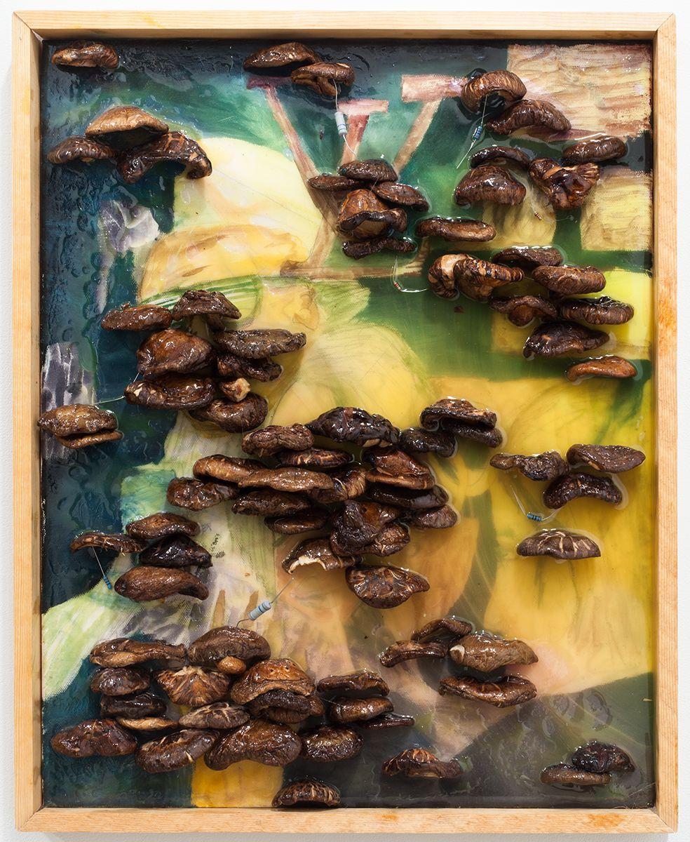 Mathieu Malouf  I.D.G.A.F., 2012  Watercolor, oil, electrical resistors, mushrooms, epoxy resin on canvas and artist's frame  20 7/8 x 17 x 2 inches (53 x 43.2 x 5.1 cm)