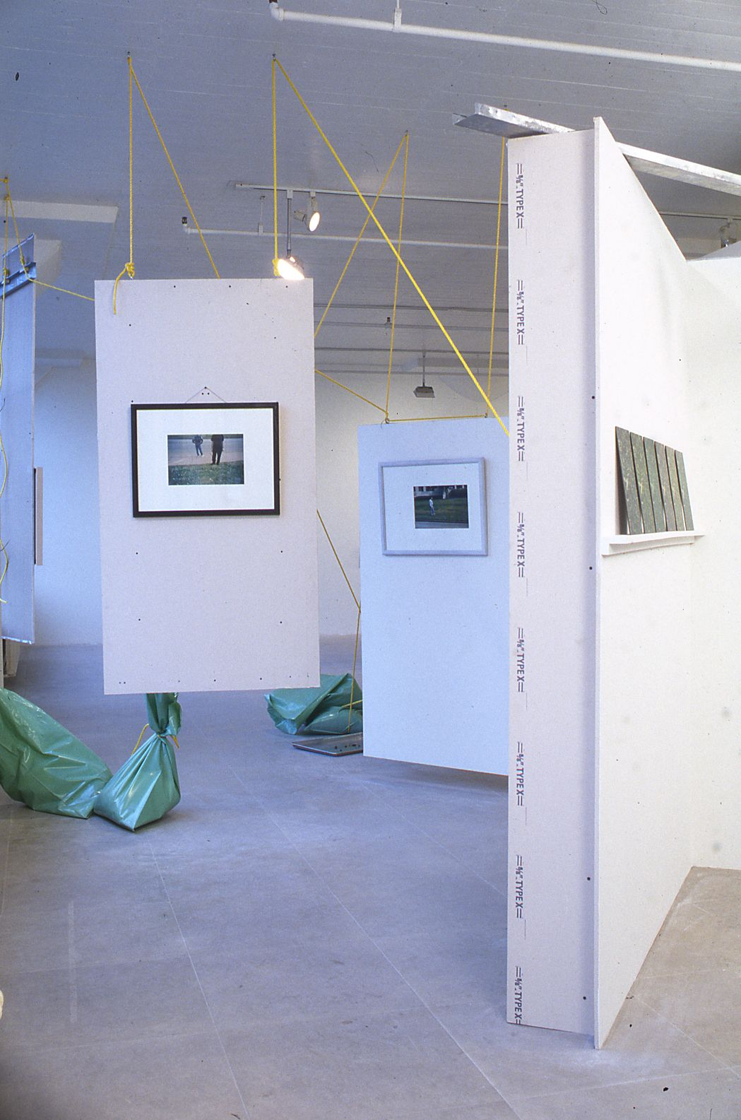 Installation view, Rachel Harrison, Greene Naftali, New York, 1997