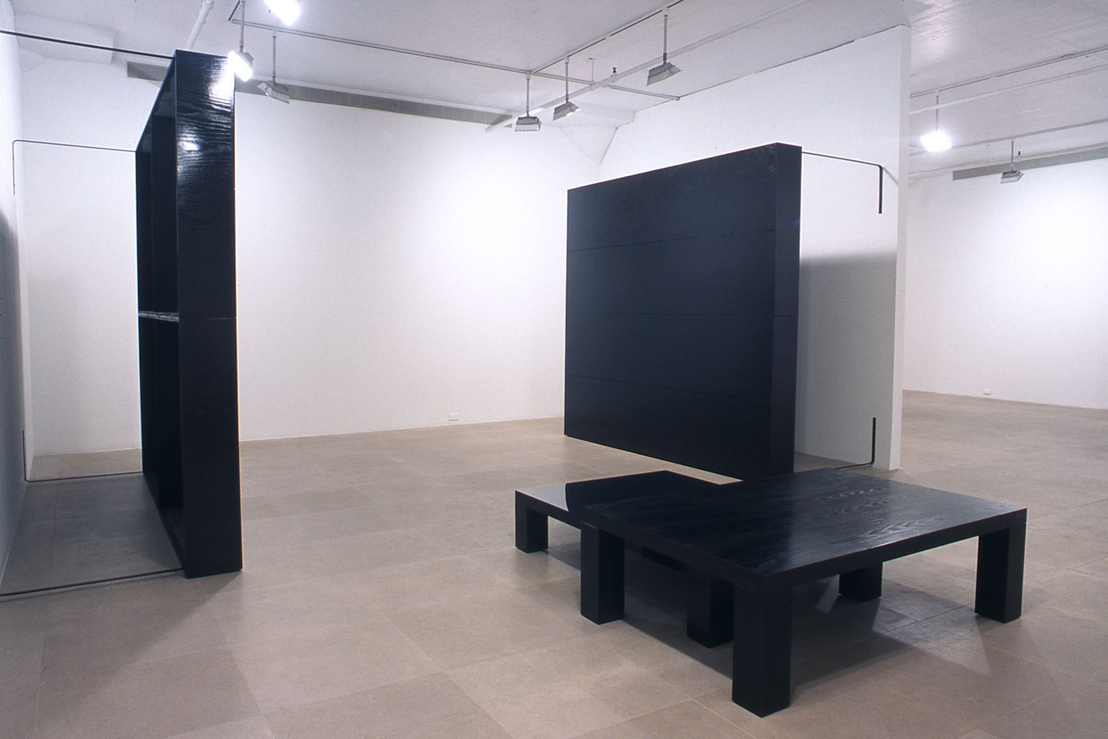 Installation view, Dog Days, Greene Naftali, New York, 2002
