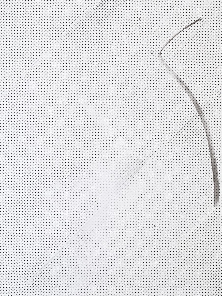 Michael Krebber MK.285, 2015 Lacquer on canvas  78 3/4 x 59 1/8 inches (200 x 150.2 cm)