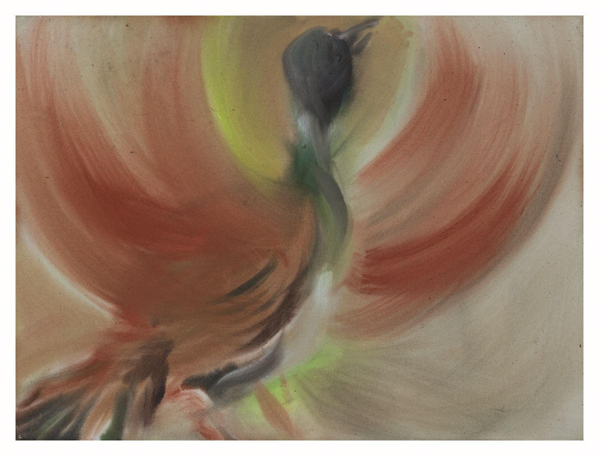 Sophie von Hellermann Pheasant, 2018 Acrylic on canvas 24 x 32 inches (61 x 81.3 cm)