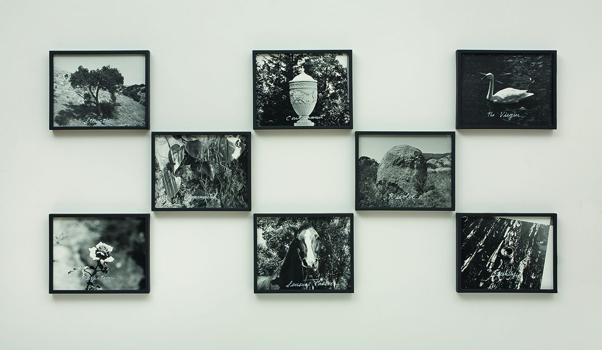 William Leavitt, Symbolic Objects, 1974/2008, Black & white photographs with acrylic ink, Overall: 33 3/4 x 71 7/8 inches (85.7 x 182.6 cm)