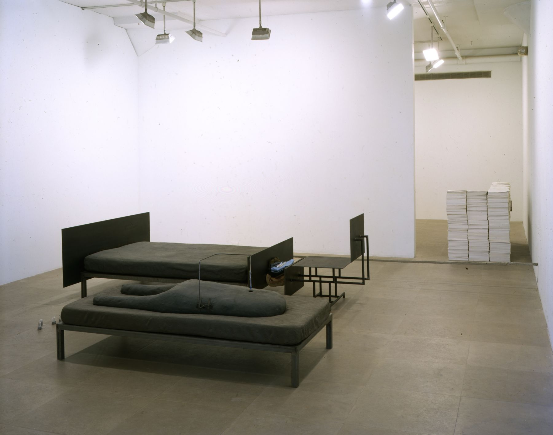 Installation view, Greene Naftali, New York, 2002