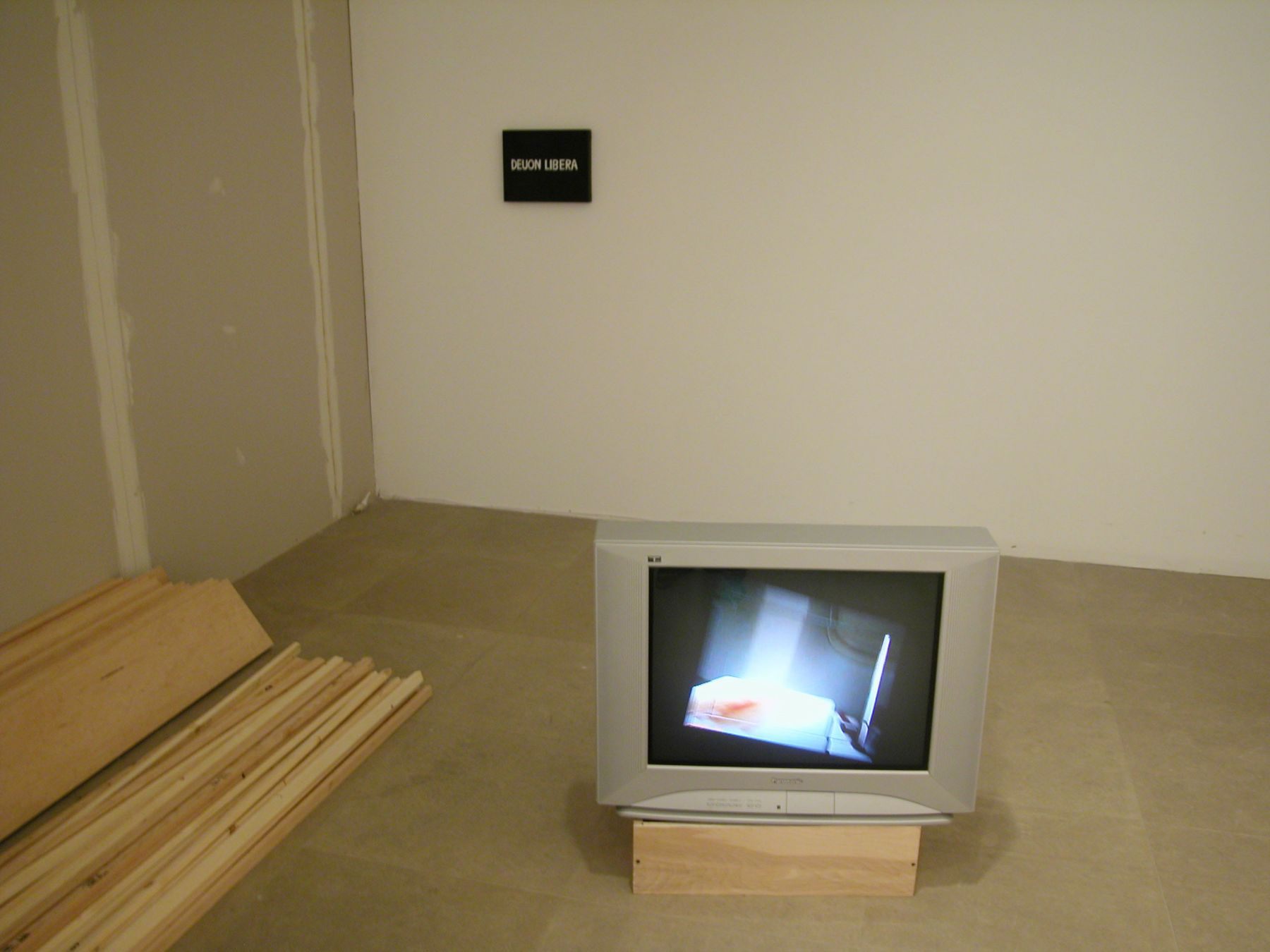 Installation view, Don't Think About Me I'm Alright,  Greene Naftali, New York, 2004