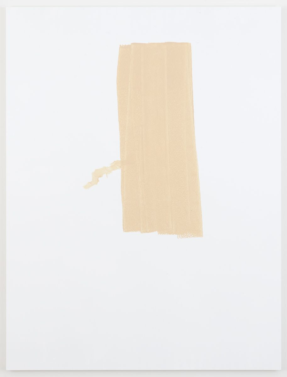 Michael Krebber Herbes de Provence MK.6065, 2018 Acrylic on canvas 78 x 59 inches (198.1 x 149.9 cm)