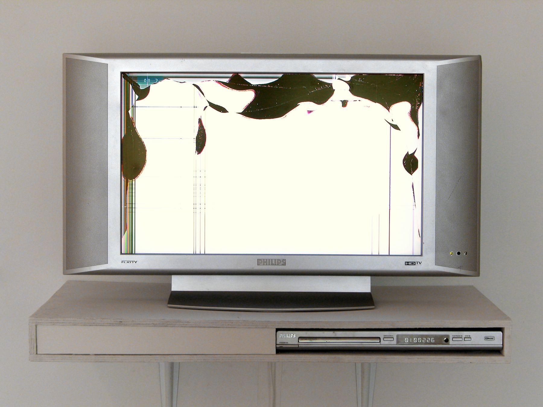 Bernadette Corporation, Hell Frozen Over, 2008, Customized Philips FlatTV monitor, DVD (Bernadette Corporation Hell Frozen Over 2000), dvd player